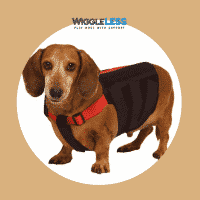 WiggleLess® Dog Back Brace
