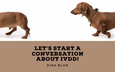 Let's start a conversation about IVDD!